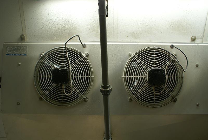Evaporateur Eco